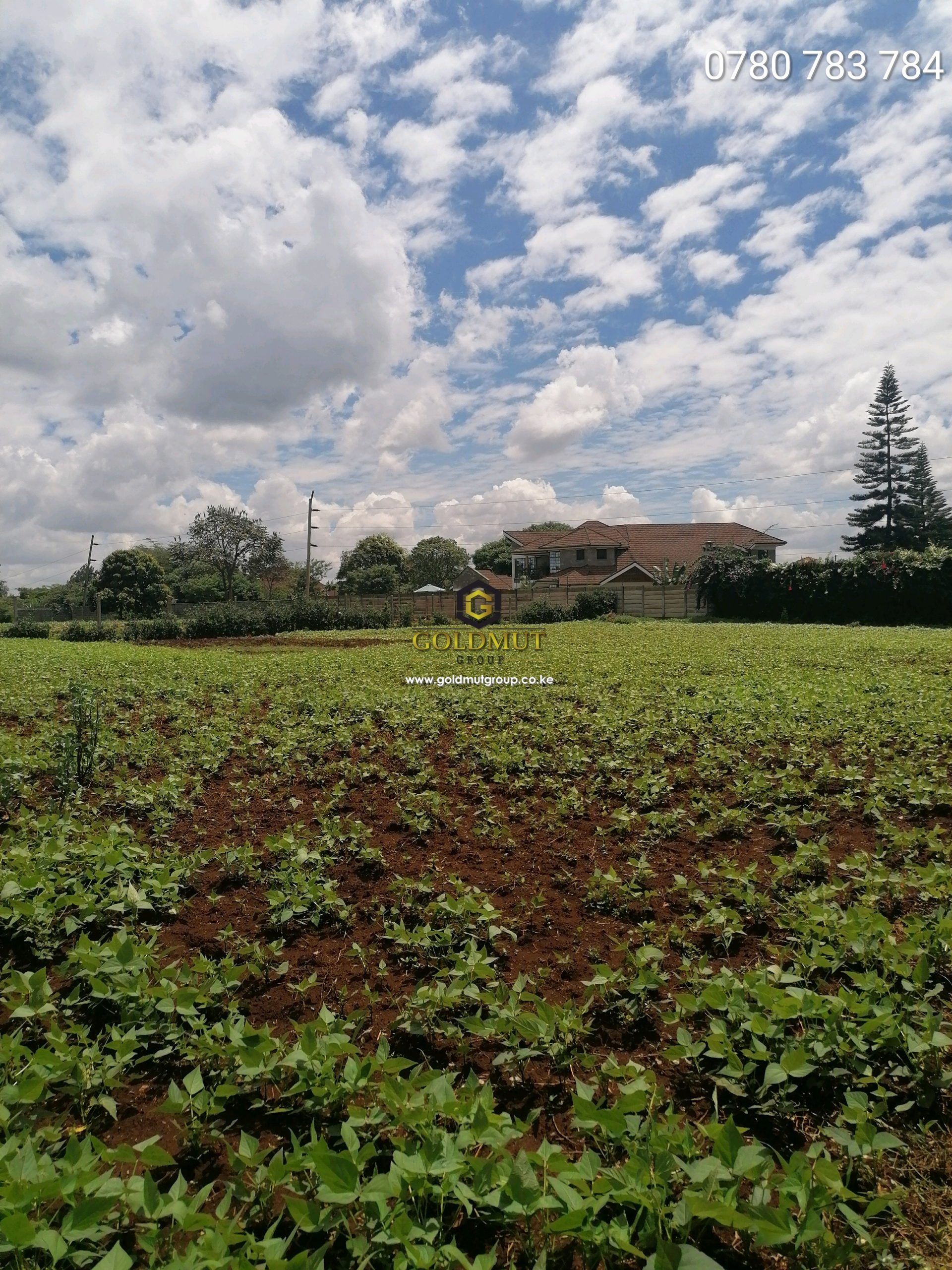1/2 Acre Half Acre for sale IN Runda Mumwe